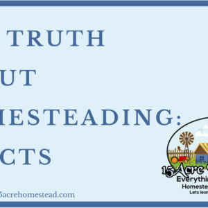 The Truth About Homesteading: 4 Facts