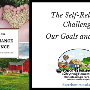 The Self-Reliance Challenge: Our Goals and Plans