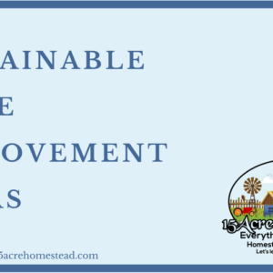Sustainable Home Improvement Ideas