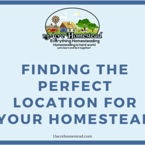 Finding The Perfect Location For Your Homestead