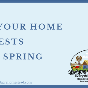 Rid Your Home Of Pests This Spring