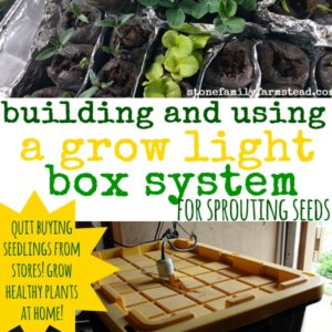 Building and Using a Grow Light Box System