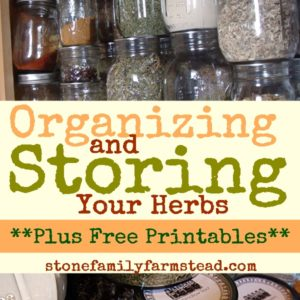Herb Storage + Free Printables