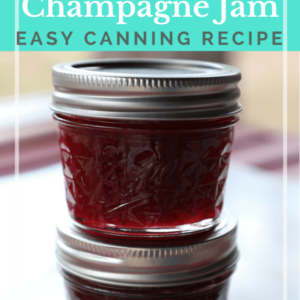 Strawberry Champagne Jam Recipe