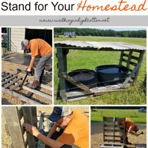 How to Build a Water and Mineral Stand for Your Homestead