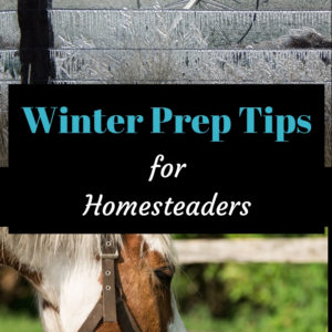 Homesteading Winter Preparation Tips