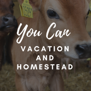 Avoid Homesteading Burnout